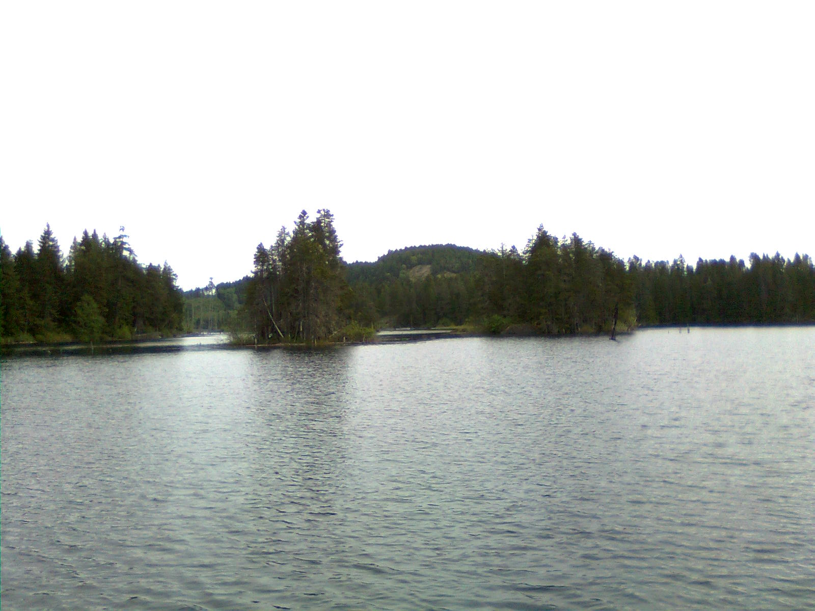 island lake guys This seven-acre island in the middle of bass lake, located about 20 minutes  south of traverse city, is yours for the taking (literally: the island,.