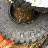 "brand new tires for sale 35""x12.5 r15 maxxis razr tires"