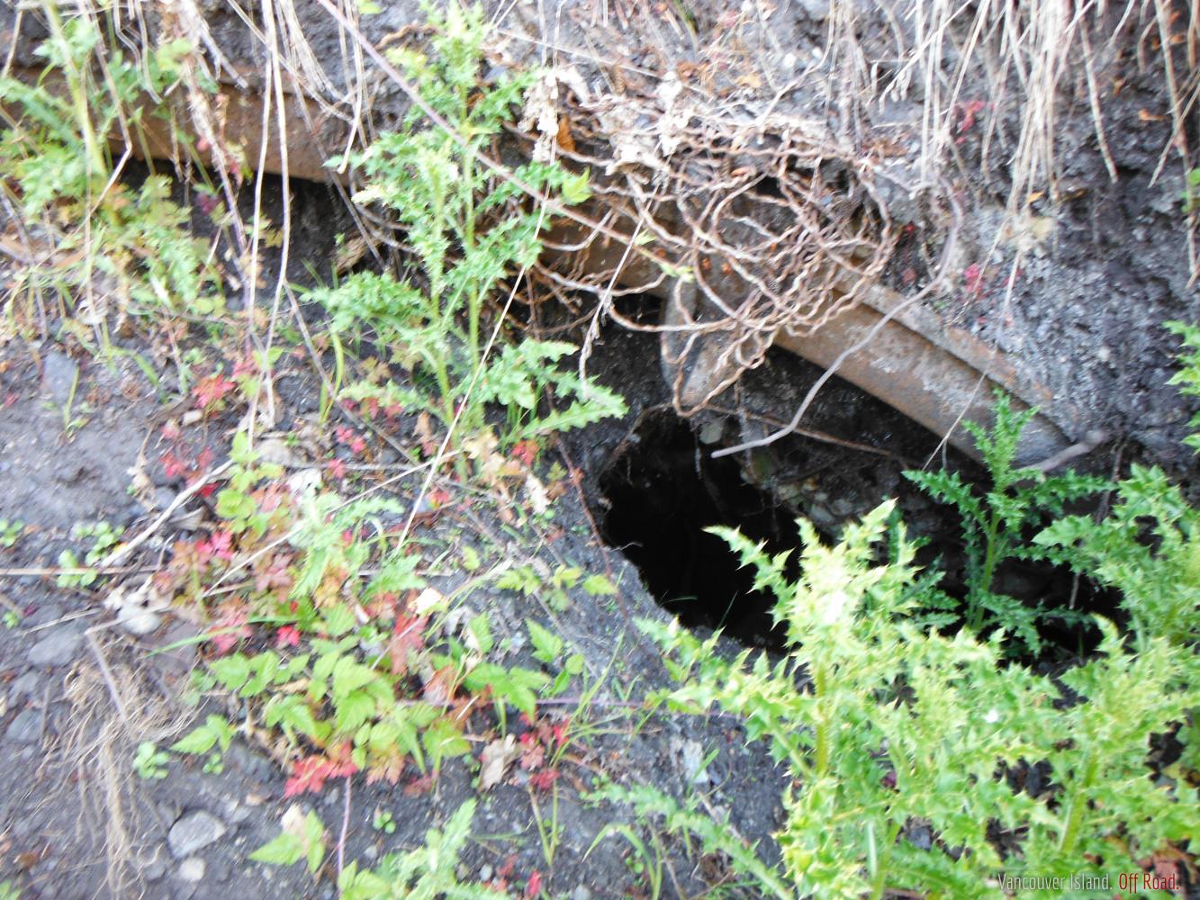 Vancouver Island Mine Sites