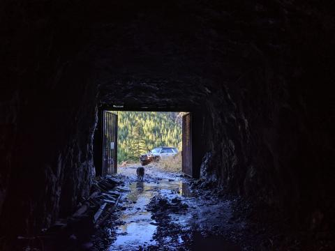 yellow creek mine Port Alberni