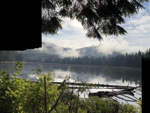 Sayward lake