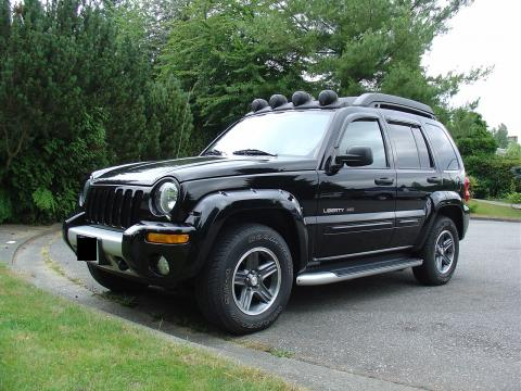 2003 Jeep Liberty Running Boards, Roof Basket, Head Rest, Light Covers