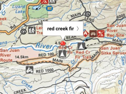planning a trip to the red creek fir