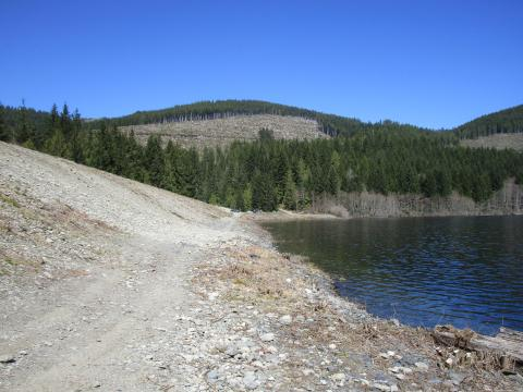 From the end closest to diversion and forebay.